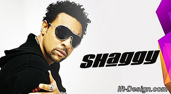 Shaggy intemporal!