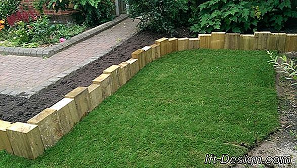Landscaping Tips: A Sloping Garden
