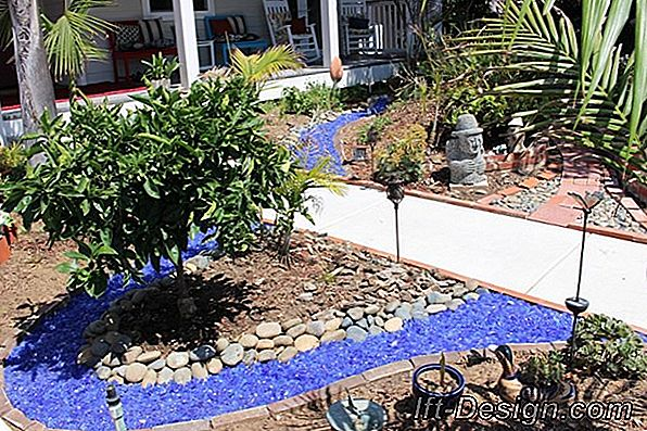 Landscaping Tips: An Ocean Garden