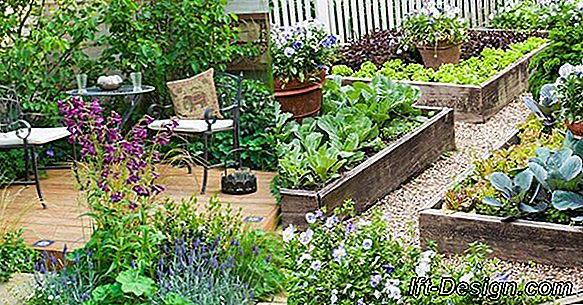 Landscaping Tips: A Raised Garden